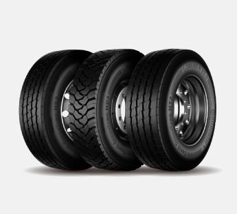 neumáticos camión